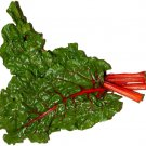 Ruby Swiss Chard 300 seeds * Edible * Ornamental * Non GMO *Heirloom* *SHIPPING FROM US* CombSH F44