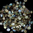50 Pcs Lot Fine AAA Blue Fire Labradorite Oval 5x7mm 45Cts Cabochon Cut Gemstone