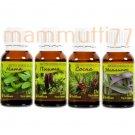 Set for sauna, SPA of essential oils 4x17ml - mint, fir, pine, eucalyptus