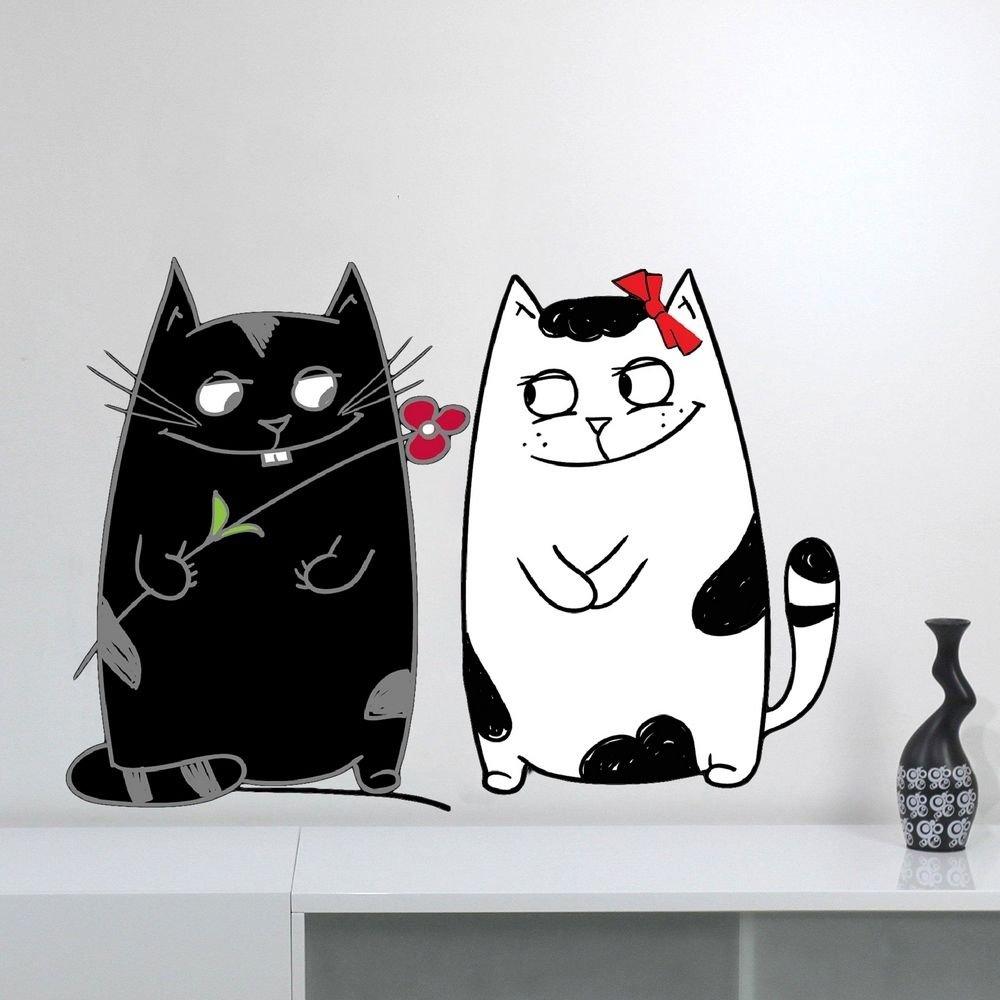 Котики черно белые картинки прикольные