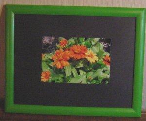 Lime Green Wood Frame