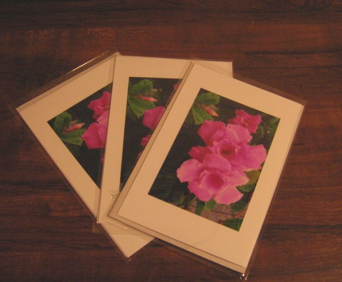 Set of 3 Cards