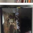 DEAD CAN DANCE LP within the realm of a dying sun