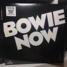 DAVID BOWIE LP bowie now