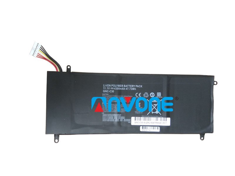 GNC-C30 Battery 961TA002F For GIGABYTE P34G V2 U2442 U24F SCHENKER XMG C404