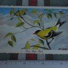 Eastern Goldfinch STATE BIRD  OF IOWA POSTCARD