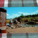 Itasca State Park, headwaters of Mississippi Postcard