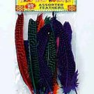 Wholesale 20 Piece Goose Feathers