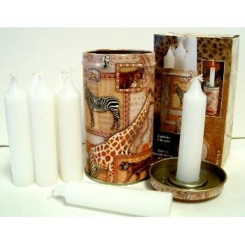 Wholesale Animal Tin with Candles