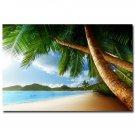 Sea Beach Seascape Poster Palm Tree Skyline Nature 32x24