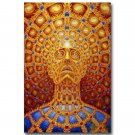 Alex Grey Psychedelic Trippy Art Poster Home Decor 32x24