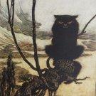Arthur Rackham A Truly Malevolent Cat Fine Art Print 32x24