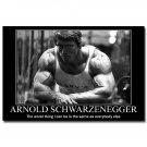 Arnold Schwarzenegger Bodybuilding Motivational Poster 32x24