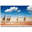 Giraffe Africa Wild Animals Landscape Art Poster 32x24