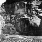Native American Indian Cornfields Of Canon Del Muerto PHOTO 32x24