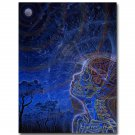 Moon Alex Grey Psychedelic Trippy Art Poster 32x24
