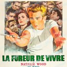 Rebel Without A Cause 1963 Vintage Movie Poster Reprint 26