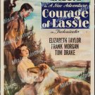 Courage Of Lassie 1946 Vintage Movie Poster Reprint 2