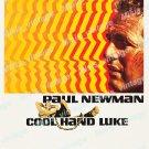 Cool Hand Luke 1967 Vintage Movie Poster Reprint 13