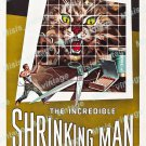 The Incredible Shrinking Man 1957 Vintage Movie Poster Reprint