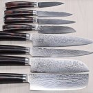 8 pc Kitchen Knife Set Damascus Steel VG10 67 Layers Color Wood Handle
