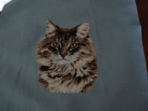 Needlepoint completed cat head on blue canvas kitty tabby cm1019