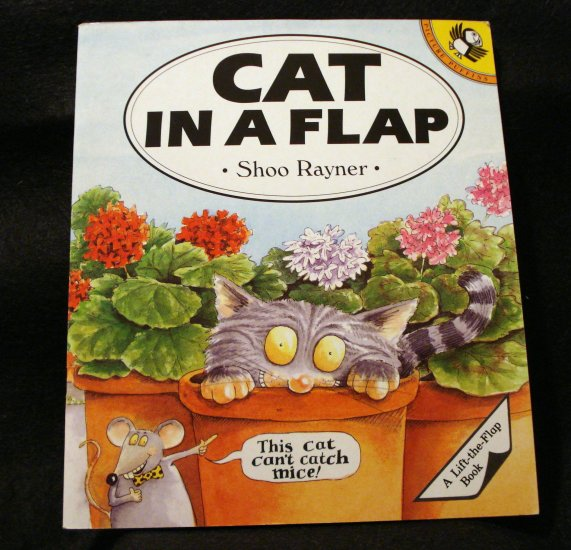 Cat in a Flap Shoo Rayner children's lift-the-flap book cm1244