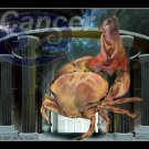 CANCER - The Crab
