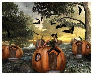 Little Pumpkin Land