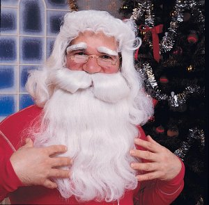 2303 Santa Wig and Whisker set