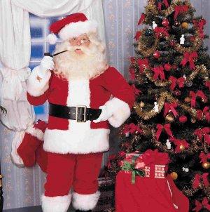 2392 Deluxe Plush Santa Suit - Size 40-48