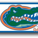 Florida Gators 3' x 5' Outdoor Flag