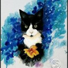 "Black & White Cat Animal Art Prints Home Office Decor 16""x20"" Wall Hanging"