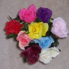 Dew Drop Roses - Dozen Mixed