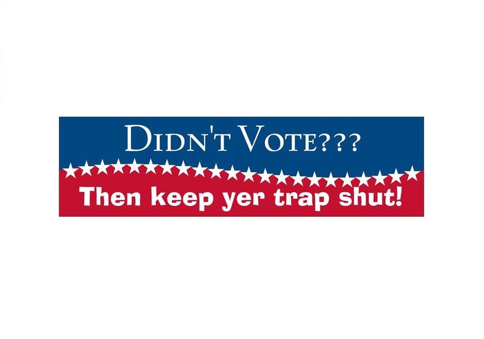 Didn't Vote? Bumper Sticker