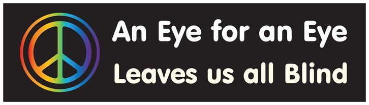 An Eye for an Eye leaves us all blind - bumper sticker