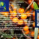 Aloes & Sea Buckthorn Oil Shampoo/ Shampoing Aloes & Argousier
