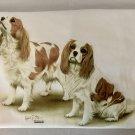 Cavalier King Charles Dog Long Sleeve Cotton Unisex T-shirt