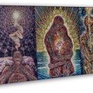 Alex Grey Psychedelic Trippy Art Home Decor 20x16 FRAMED CANVAS Print