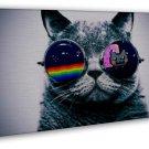 Cool Macro Nyan Cat Glasses Art 20x16 Framed Canvas Print Decor