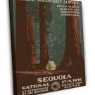 Vintage Sequoia National Park Wpa Art 20x16 Framed Canvas Print