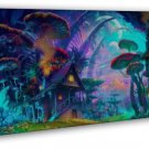 Mushroom House Psychedeli C Trippy Abstract Art 20x16 FRAMED CANVAS Print
