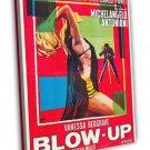 Blow Up 1967 Vintage Movie Framed Canvas Print 5