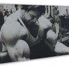 Arnold Schwarzenegger Bodybuilder Mr Olympic 20x16 FRAMED CANVAS Print