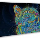 Psychedelic Trippy Cat Abstract Art 20x16 FRAMED CANVAS Print