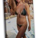 Miesha Tate Hot Girl Fighter Mma Art 20x16 Framed Canvas Print Decor