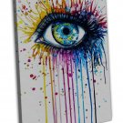 Peacock Eye Water Colour Art 20x16 Framed Canvas Print Decor