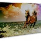 White Horses Galloping Sunset Beach Landscape 20x16 FRAMED CANVAS Print