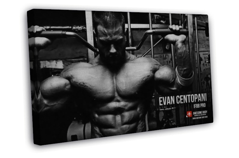 Bodybuilding Motivational Quotes Fitness Art 20x16 FRAMED CANVAS Print