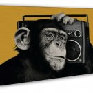 The Chimps Funny Monkey Listening Radio 20x16 FRAMED CANVAS Print